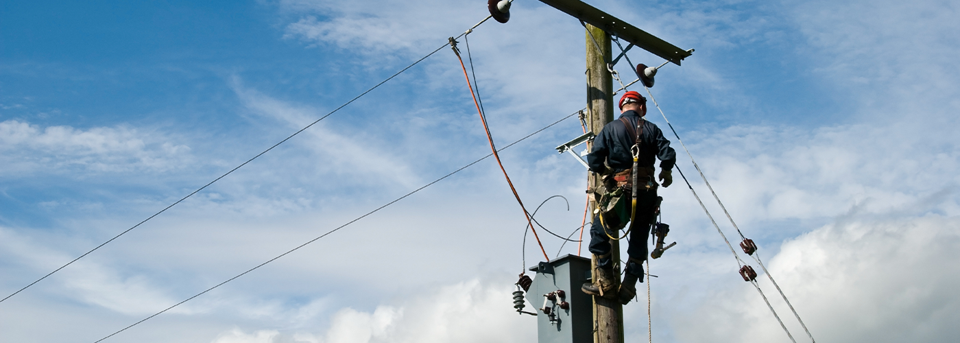 Technician working on aerial network pole.